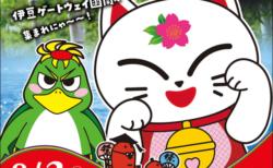 今年で32回目!猫メイクで踊って楽しむ伊豆の奇祭「かんなみ猫おどり」が8月3日に開催