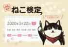 猫の気持ちをもっと理解したいニャ…「第4回ねこ検定」2020年3月に全国6都市で開催決定