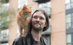 猫のように生きるのニャ!元ホームレスの男性が野良猫から学んだ教訓本「ボブが教えてくれたこと」