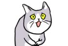 申し訳なさそうな表情がたまらニャい…話題の猫キャラ「これからしかられるネコ」のグッズが発売