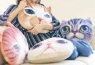 並べて飾ると圧巻ニャ〜!アメショやマンチカンなどリアルな猫顔クッション4種類が新発売