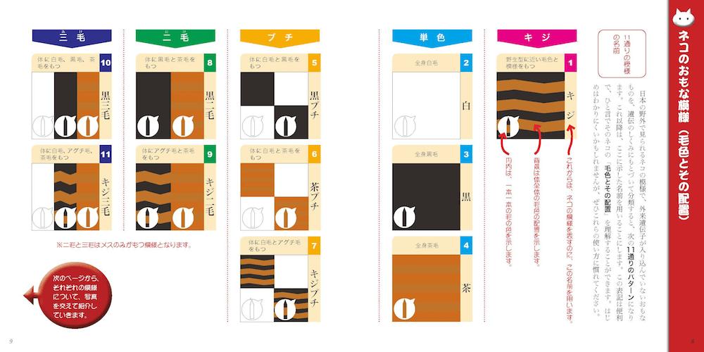 猫の主な模様11パターン分類 by 書籍「ネコもよう図鑑」