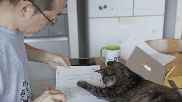 テレビ番組「ネコメンタリー 猫も、杓子(しゃくし)も。」サイエンス作家・竹内薫の出演回