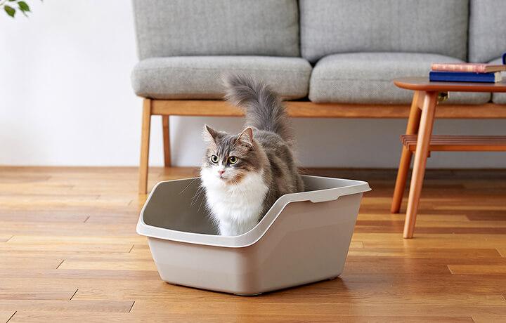猫砂やオシッコの飛び散りを防止する猫トイレ「HY cat(ハイキャット)」