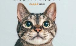 保護猫や保護犬を飼うことも普通の選択肢に…話題の写真展が書籍化「みんなイヌ、みんなネコ」
