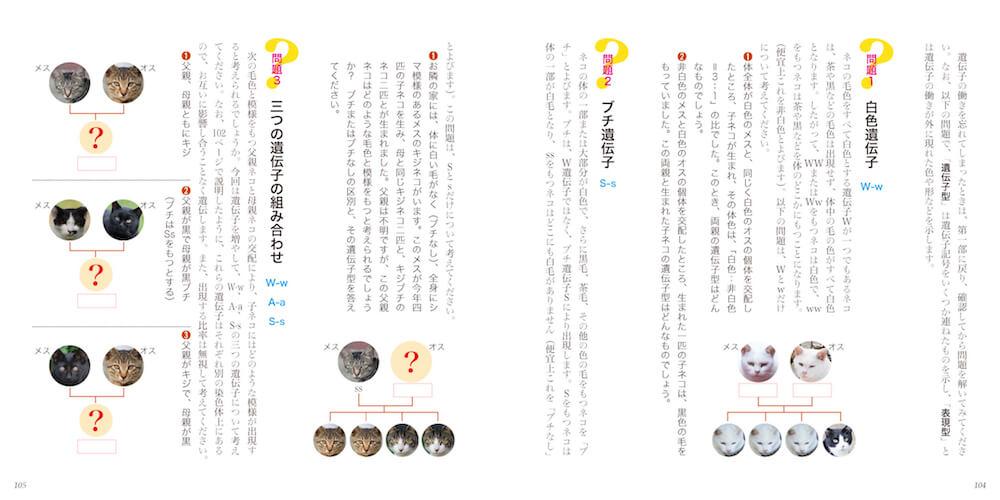 巻末に収録されている猫の遺伝子当てクイズ by 書籍「ネコもよう図鑑」
