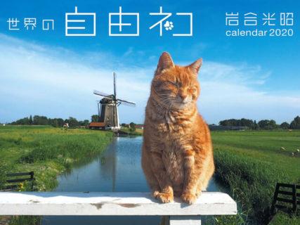 お部屋に飾れるポスター付き!岩合光昭さんの新作カレンダー「世界の自由ネコ2020」