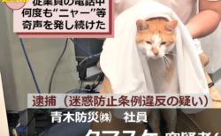 迷惑防止条例違反の容疑で逮捕されてしまったニャ…話題のネコ「タマスケ」が早くもグッズ化