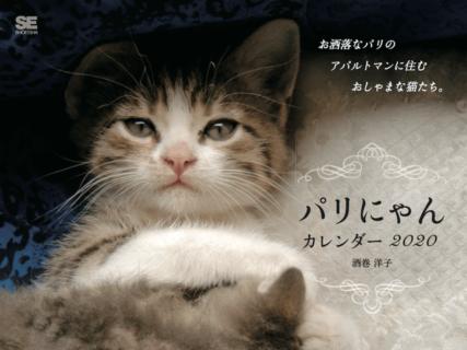 お洒落な猫カレンダーを飾りたい人にはぴったりニャ「パリにゃん カレンダー 2020」