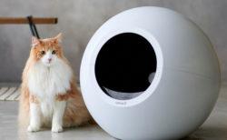 球型のフォルムが美しい、最先端の自動猫トイレ「CIRCLE 0(サークル ゼロ)」