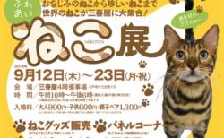 世界の珍しい猫(約30種/50匹)が大集合!「ふれあいねこ展」青森・八戸で開催中