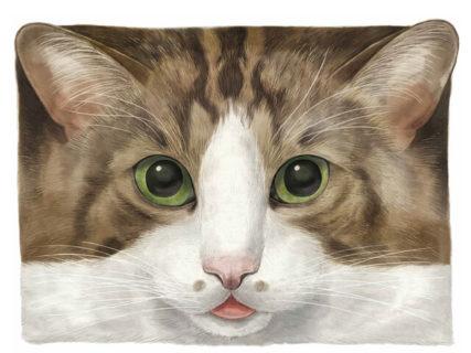 作家による1点物の猫アイテムも集結!Cat's ISSUEの期間限定ショップが二子玉川に登場