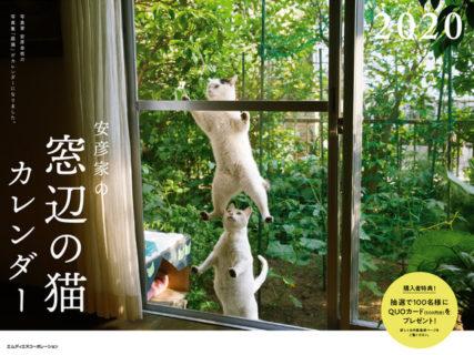 ニャンともかわいいお客さん♪ 窓辺にやってくる猫の写真集「庭猫」のカレンダーが発売