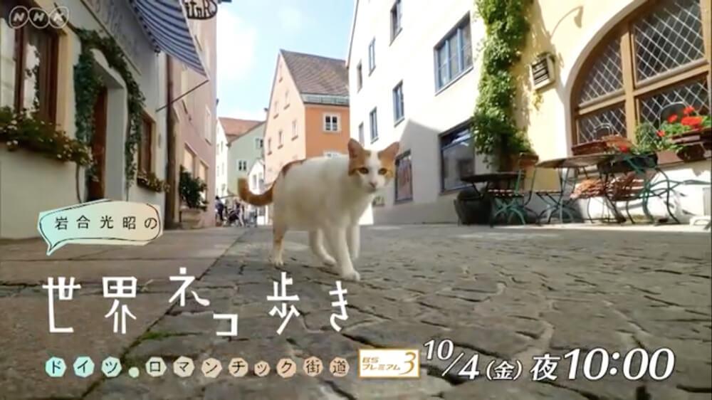 岩合光昭の世界ネコ歩き「ドイツ・ロマンチック街道」メインビジュアル