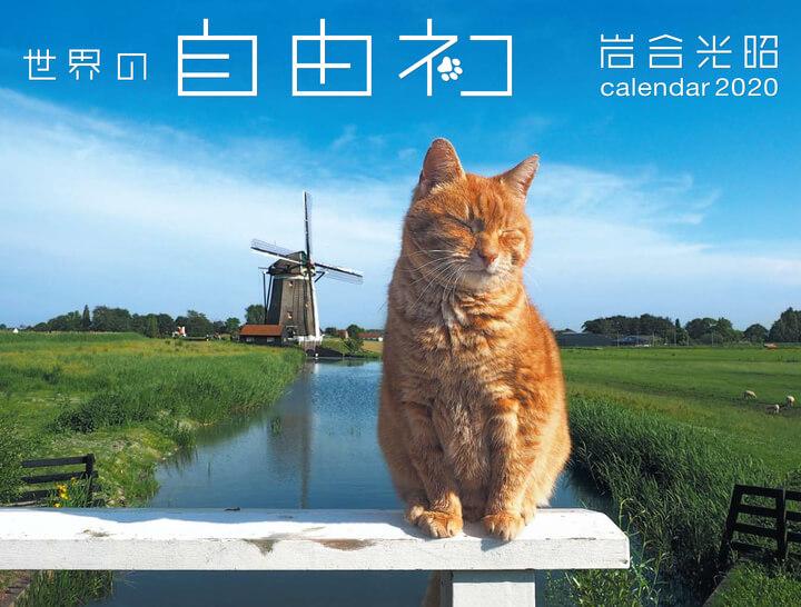岩合光昭カレンダー「世界の自由ネコ2020」の表紙