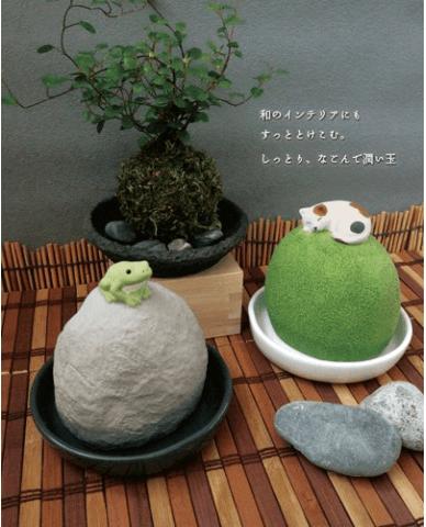 猫と蛙の自然気化式の加湿器「潤いマスコット 潤い玉」を並べて飾ったイメージ
