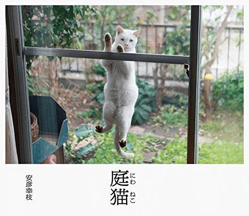 安彦幸枝さんの写真集「庭猫」の表紙