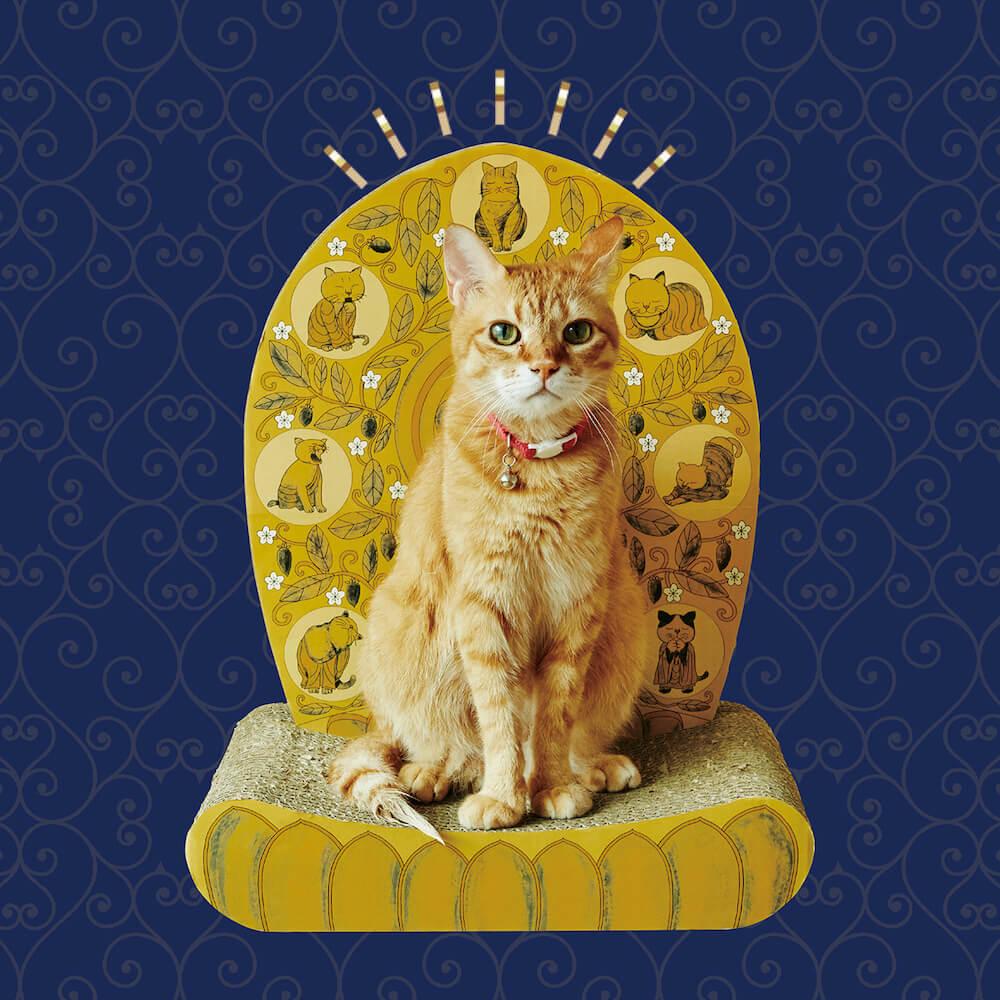 ネコの後ろから後光が射しているかのような「光背つめとぎ」