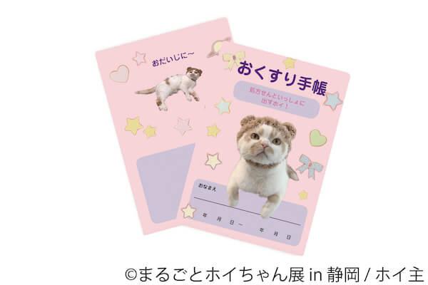 ちくわ柄の人気猫「ホイップ(ホイちゃん)」のおくすり手帳