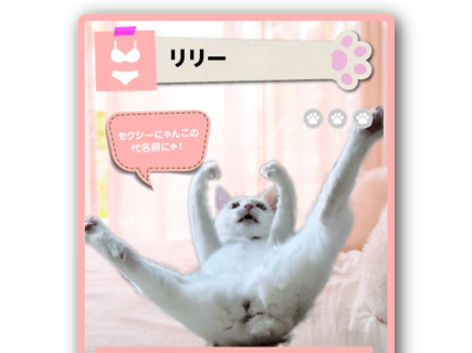 愛猫がトレカになるチャンスにゃ!カードになりたい「キャラが濃い猫」コンテストが開催中