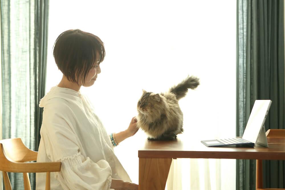 動物看護士、キャットシッター兼 キャットカウンセラーの「鈴木ゆうこ」さん