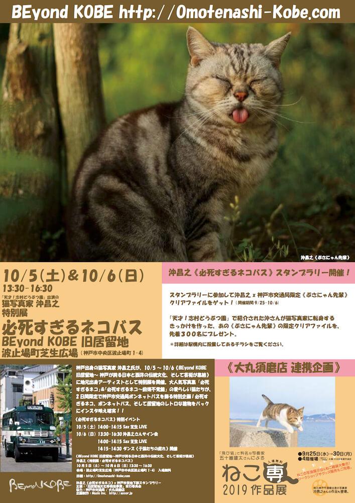 沖昌之さんの作品をボンネットバスに展示する特別展「必死すぎるネコバス」メインビジュアル