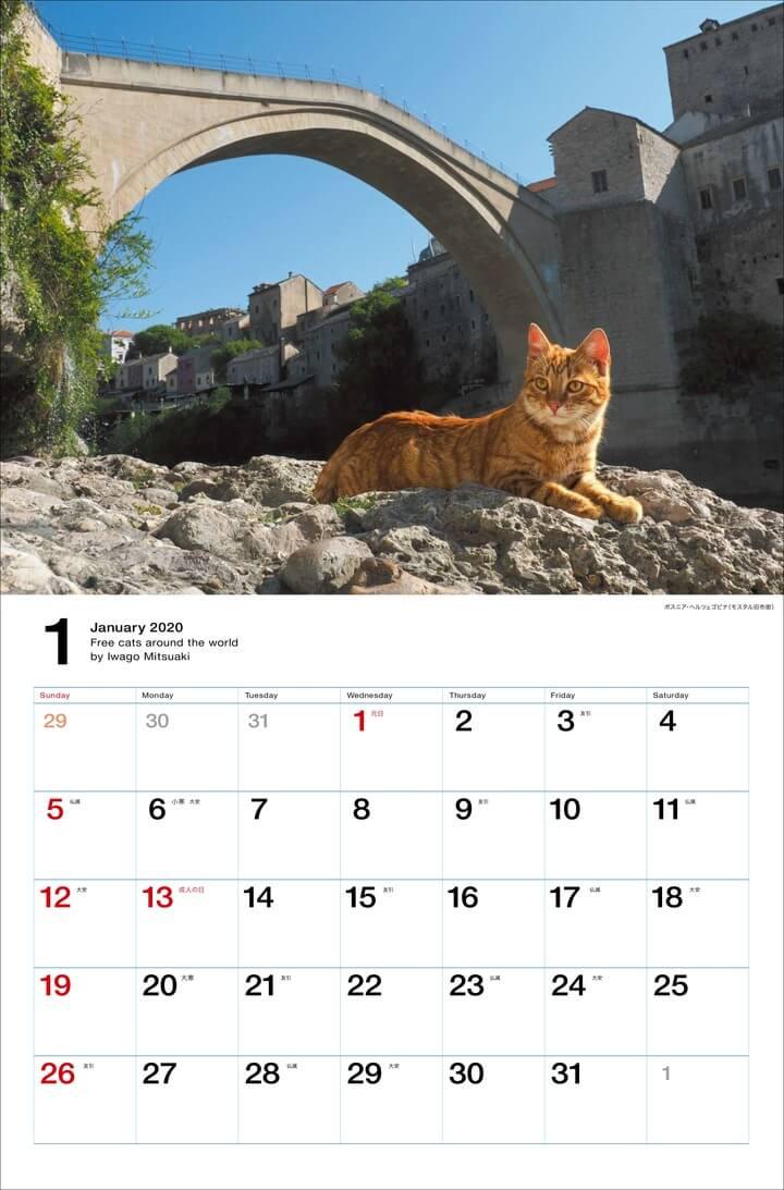 ボスニア・ヘルツェゴビナ(モスタル旧市街)の茶トラ猫 by 岩合光昭カレンダー「世界の自由ネコ2020」