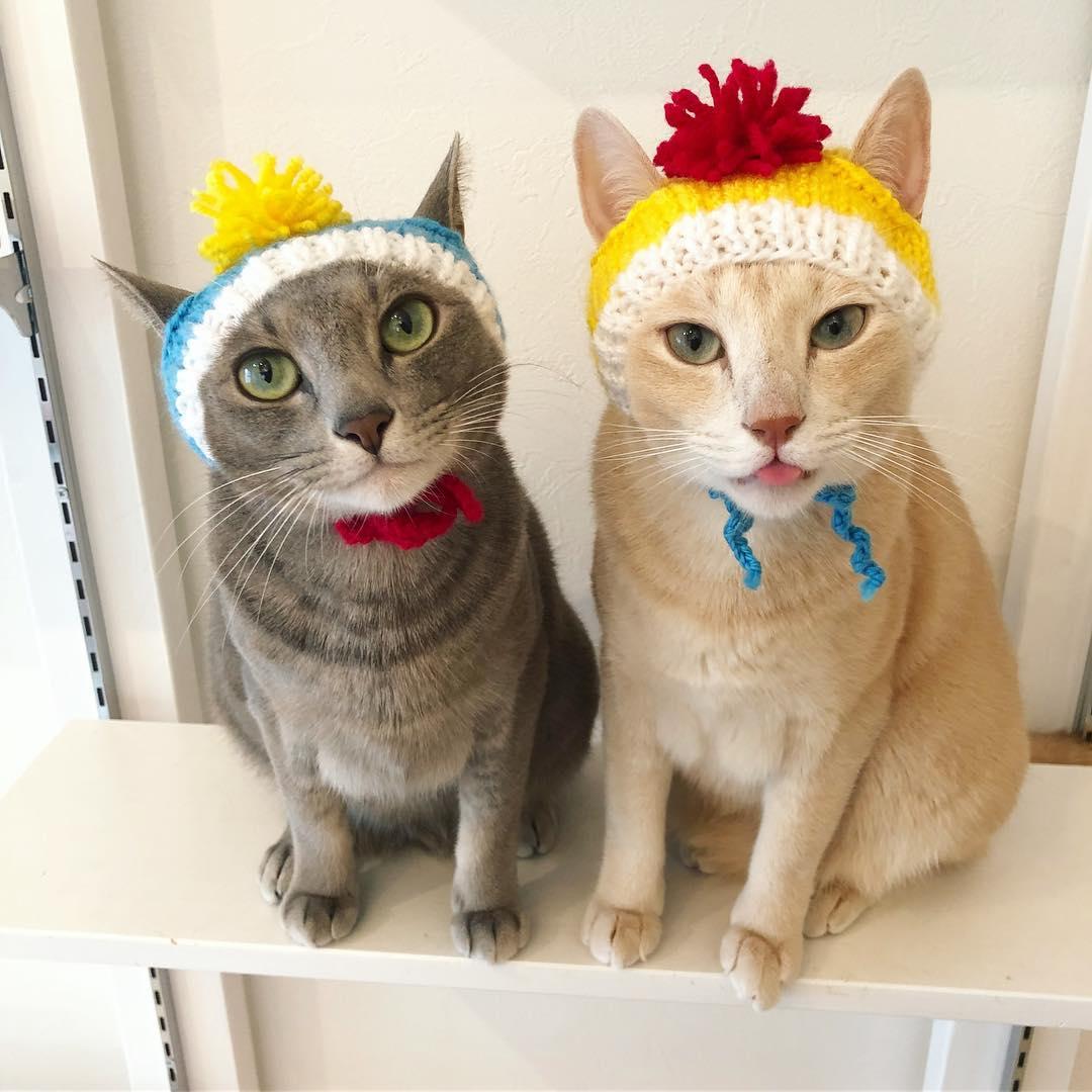 作家「徒然猫屋。」が制作した帽子をかぶる2匹の猫