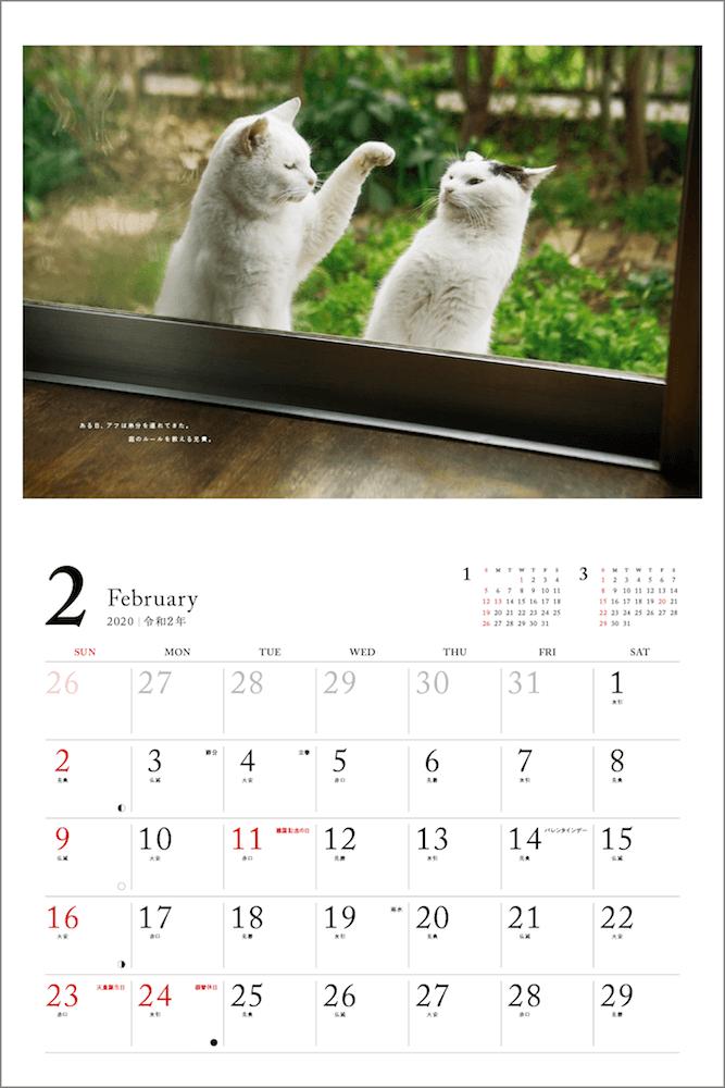 窓の外で喧嘩をする猫 by 「2020 安彦家の窓辺の猫 カレンダー」