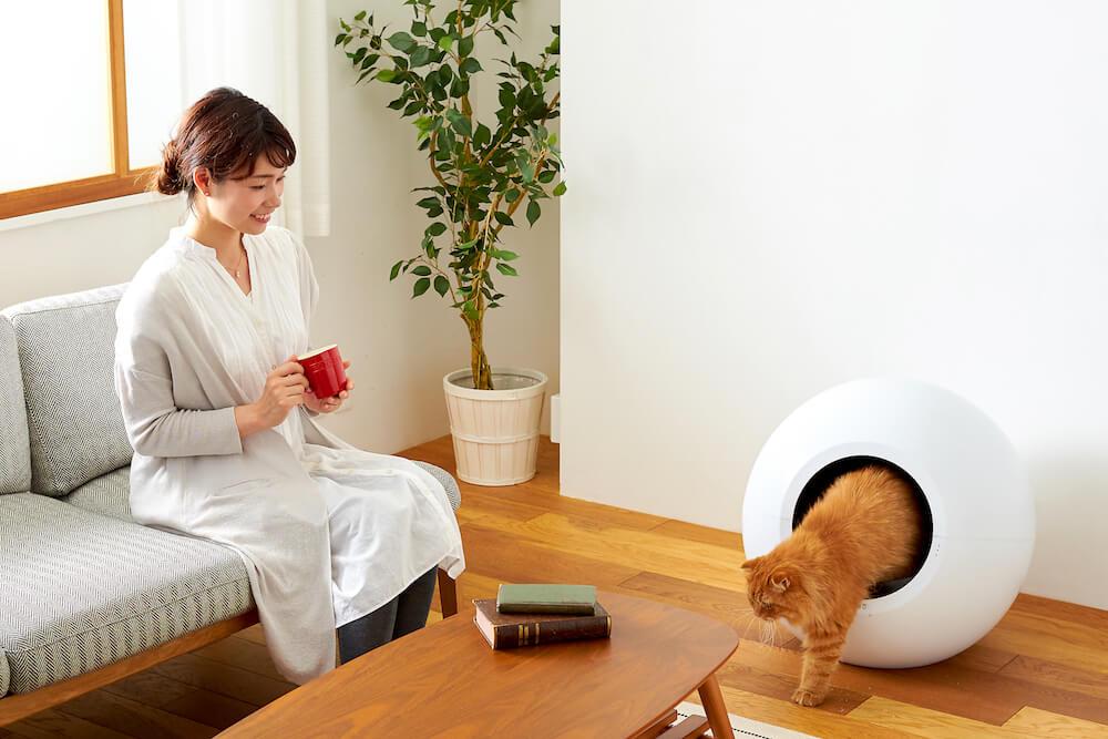 猫用の全自動トイレ「CIRCLE 0(サークル ゼロ)」で用を足して出てきた猫