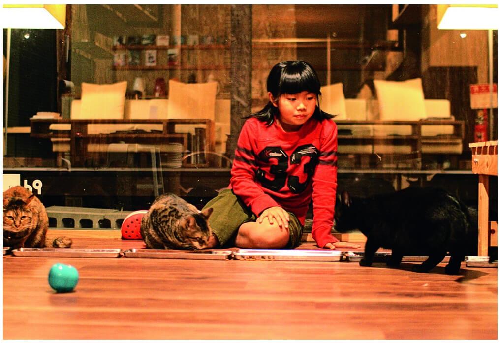 猫のお世話をする猫庭の館長、手島姫萌さん