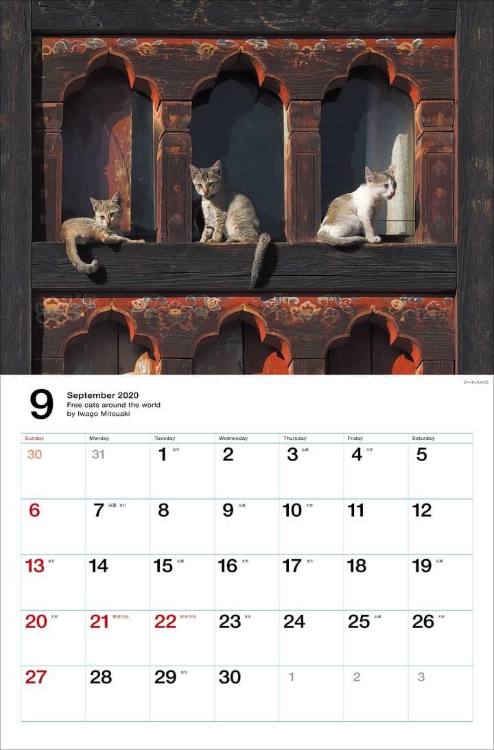 ブータン(パロ)の木造建築でくつろぐ猫 by 岩合光昭カレンダー「世界の自由ネコ2020」
