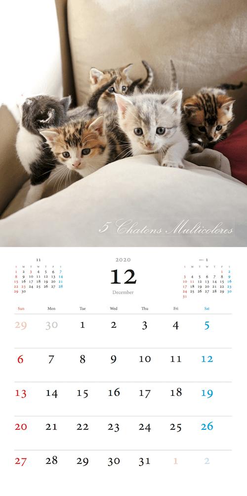 「パリにゃん カレンダー 2020」12月のカレンダーイメージ