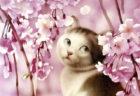 人間のような猫の表情にうっとり…雑誌の表紙絵40周年を記念した村松誠さんの「犬猫イラスト展」
