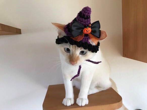 猫用のハロウィン帽子 by ハッピーハロウィン/misa