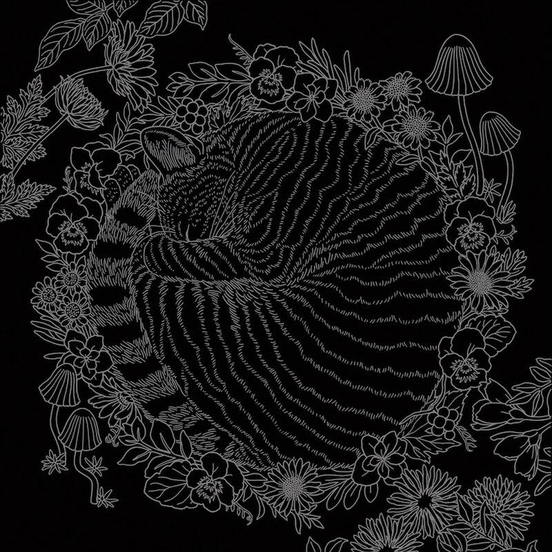 猫の下絵が描かれたブラックシート by スクラッチアート本「猫と花と可愛いもの」