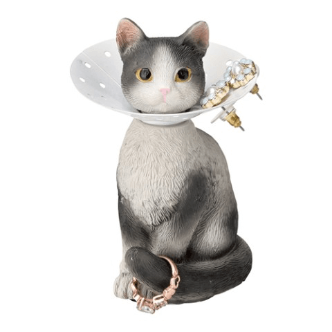 エリザベスカラーを付けた猫のピアスホルダーにピアスを収納したイメージ(ハチワレ)