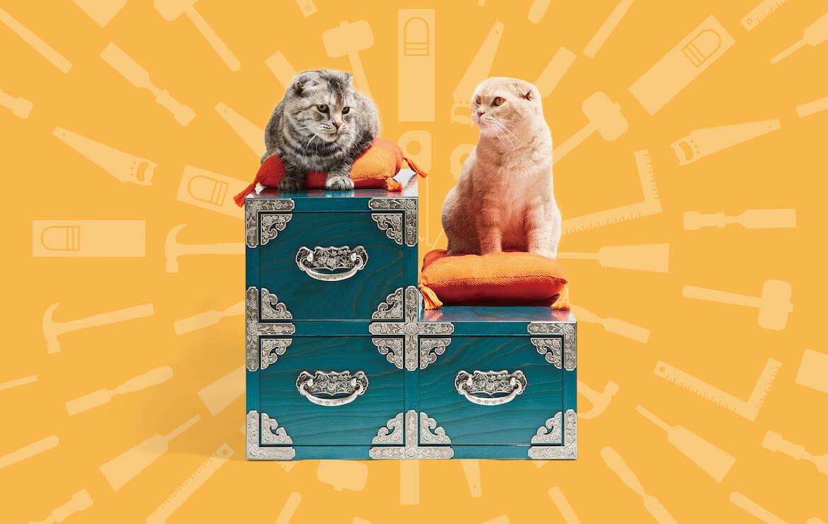 境木工が制作した猫用のからくり箪笥 by ネコ家具