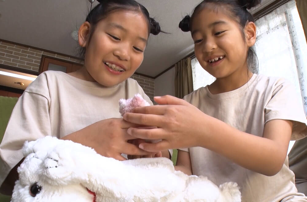 ペットのお産を応援する玩具「ねこ産んじゃった!」の使用イメージ