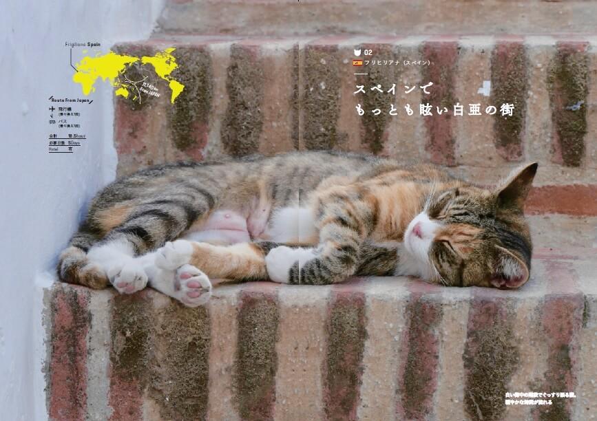 スペイン・フリヒリアナの猫 by「世界の美しい街の美しいネコ 完全版」