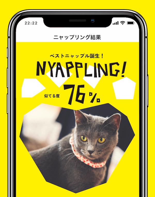 アプリ「Nyappling(ニャップリング)」の診断結果で表示された自分と似ている猫