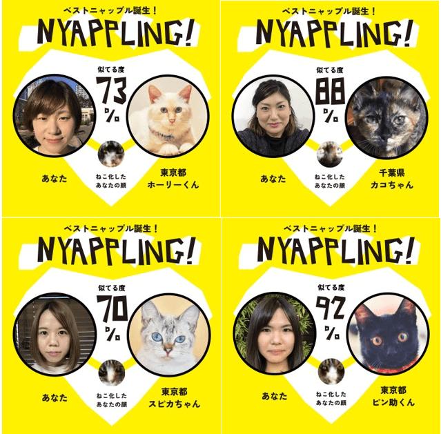 自分の顔と似ている猫の判定結果画面イメージ by アプリ「Nyappling(ニャップリング)」