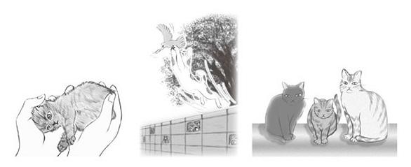 書籍「実話・ファンタスティック ねこ物語 ねこ模様で人間模様を学んだ」の中面イメージ