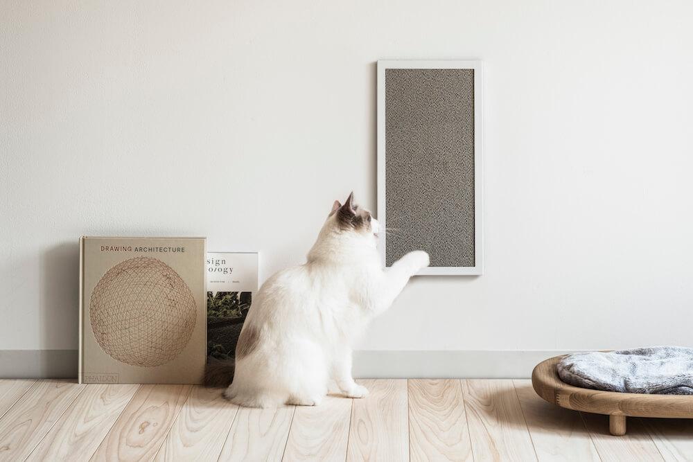 カーペット生地の爪とぎ「NEKOBOARD(ネコボード)」を壁に設置したイメージ