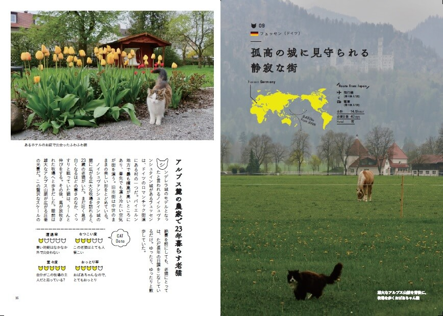地図や日本からの距離や所要時間、旅行に必要な日数、飛行機の乗り換え回数、移動手段、ホテルの有無などを収録 by「世界の美しい街の美しいネコ 完全版」