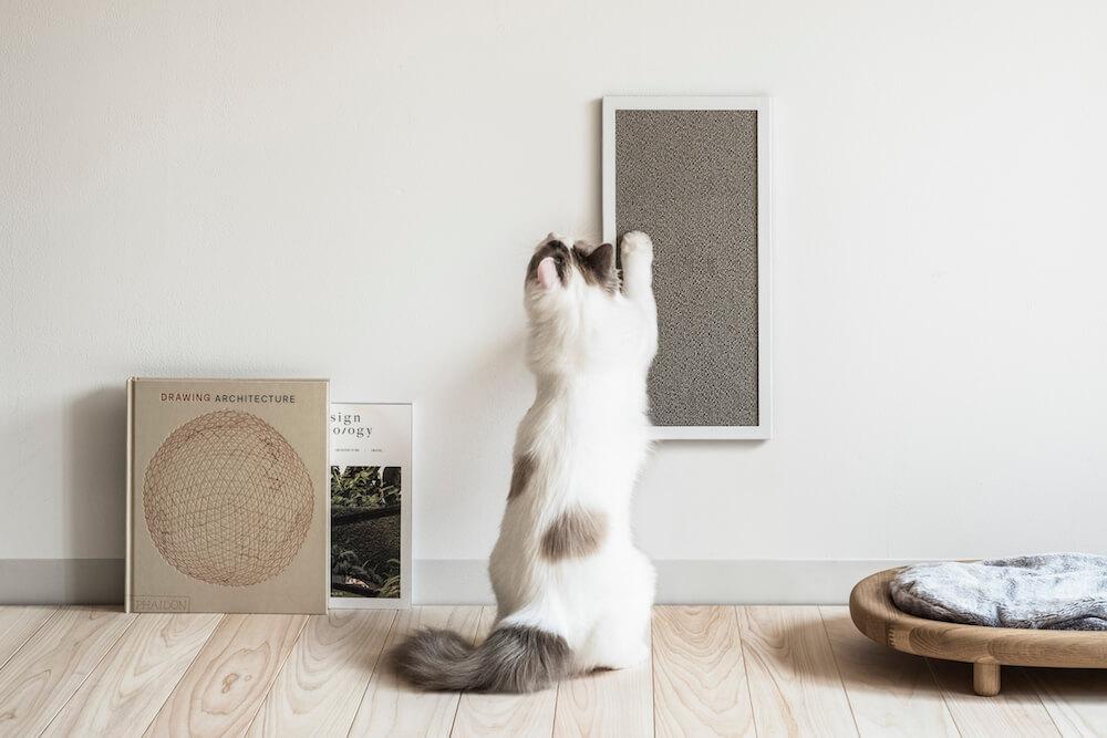 カーペット生地の爪とぎ「NEKOBOARD(ネコボード)」で猫が爪を研いでいるイメージ