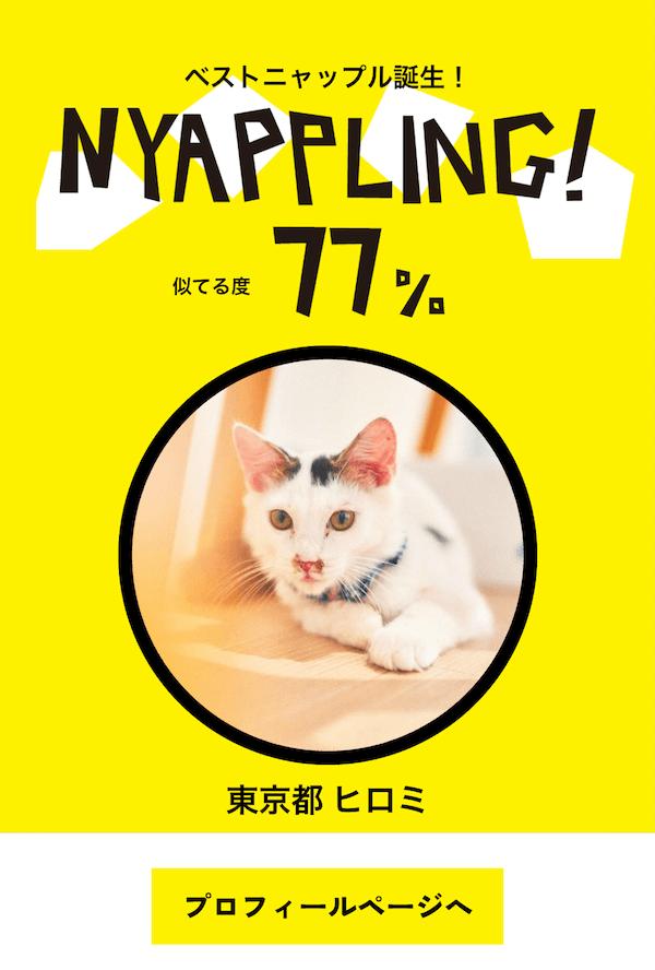 猫が自分の顔と似ているパーセンテージも表示 by アプリ「Nyappling(ニャップリング)」