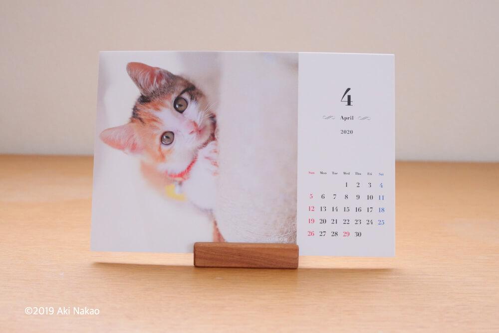 2020年 保護猫カフェひだまり号チャリティカレンダーの製品イメージ