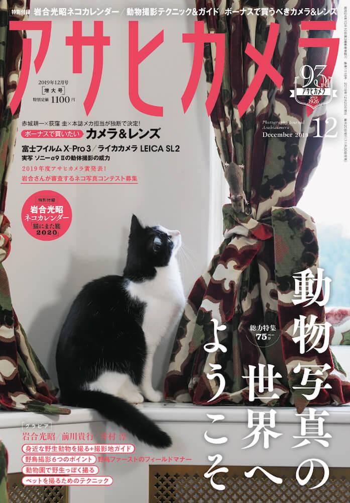 岩合光昭さんのネコ写真を採用したアサヒカメラ2019年12月号の表紙