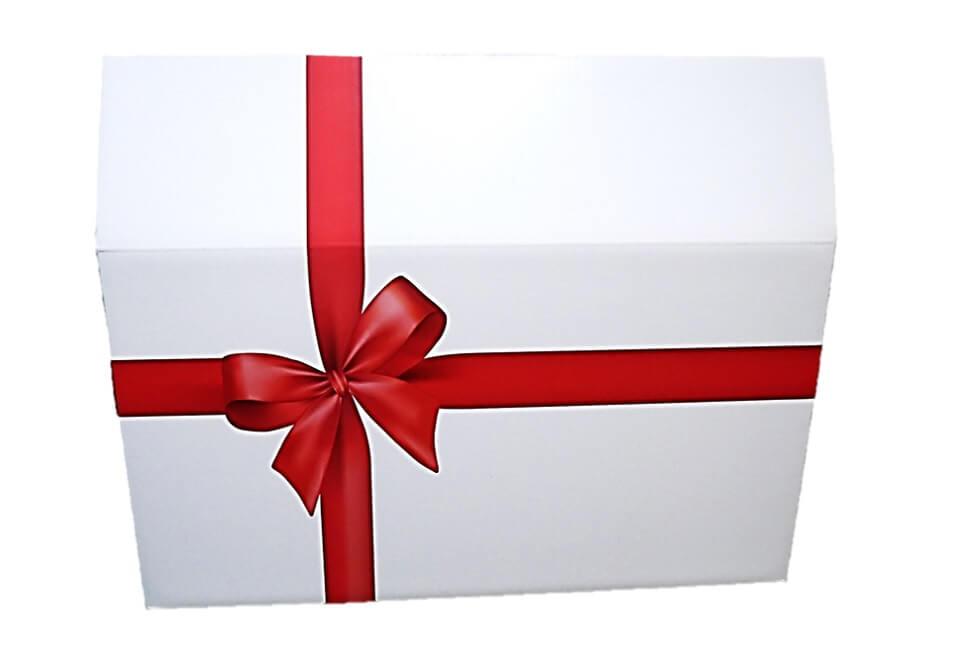 爪とぎ一体型の猫ハウス「つめとぎプレゼントBOX」の製品単体イメージ